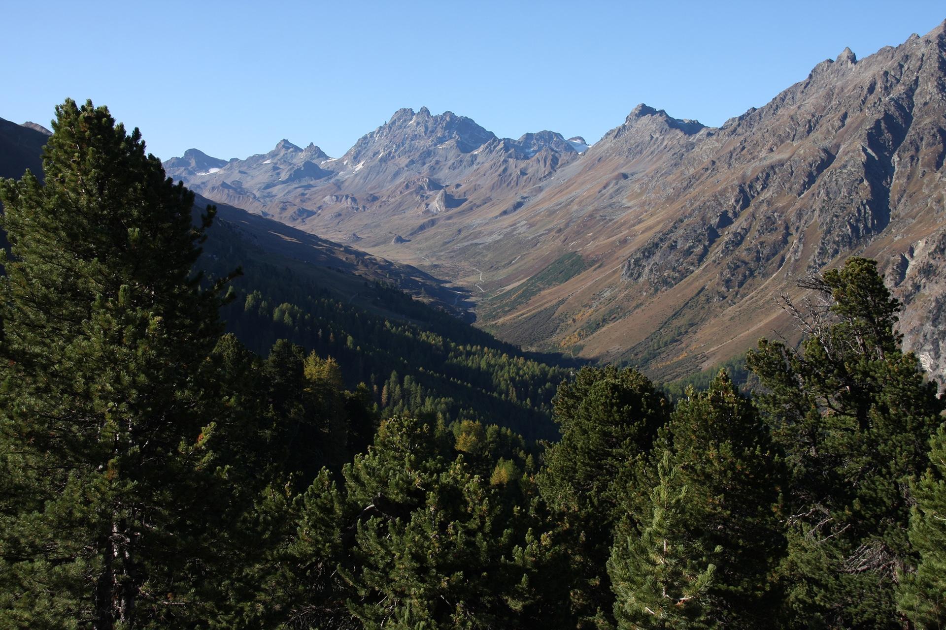 landschaft-(49)